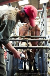 Portrait d'agriculteurs sur la banque d'images agricoles du studio des 2 prairies